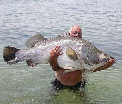2006 3 7 egypt big fish 2 45