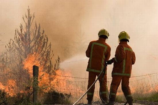 preventing forest fires Kkl-jnf plays a major role in preventing and extinguishing wildfires, which in israel are usually due to arson or negligence.