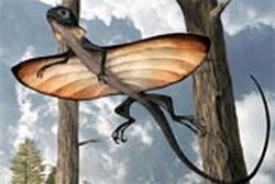 ancient lizard glided on stretched ribs 9