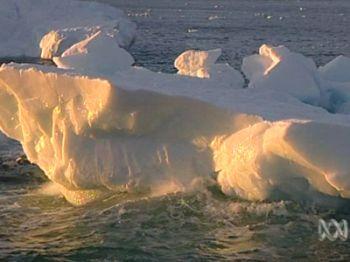 antarctic has been massive 9