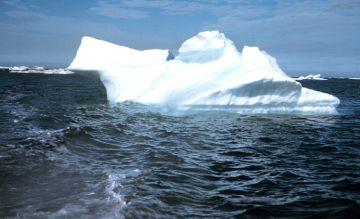 arctic summer 9