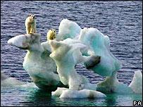 arctic 3821