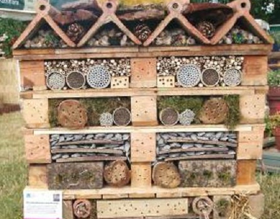 Chris Beardshaw's Insects Habitat