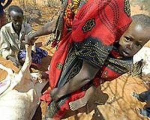 drought stricken kenya uganda 9