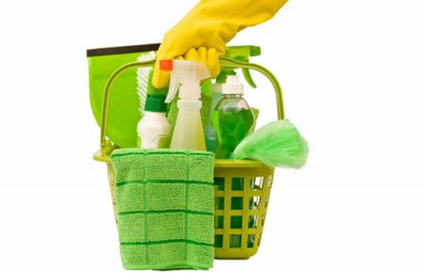 5 eco friendly cleaning products for your green home for Sustainable home products