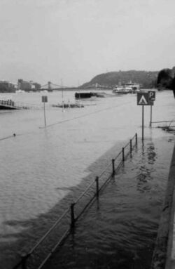 flooding danube