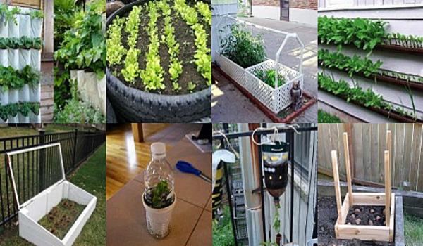 Gardening hacks landscape design programs for Garden design hacks