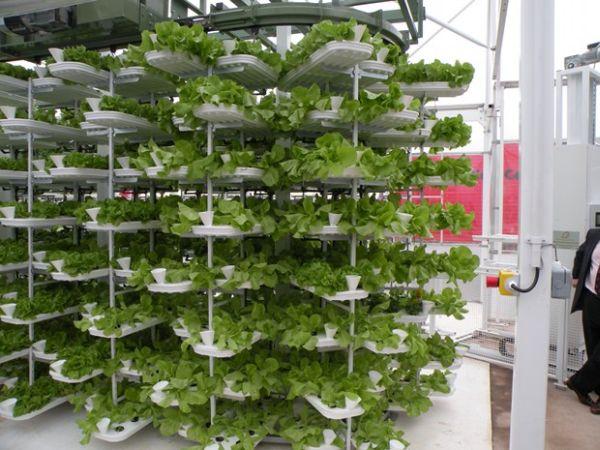 Vertical Farming In A Parking Garage Green Living Guide