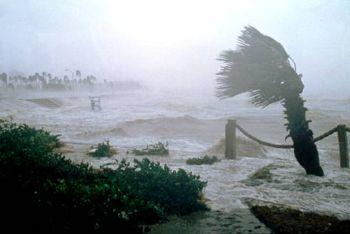 hurricane sweeping through land