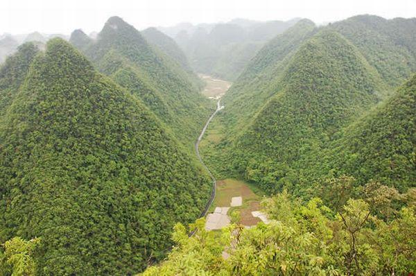 Libo Karst Forest: