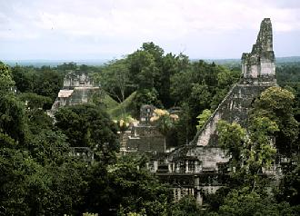 odyssey of the guatemalan jungle5