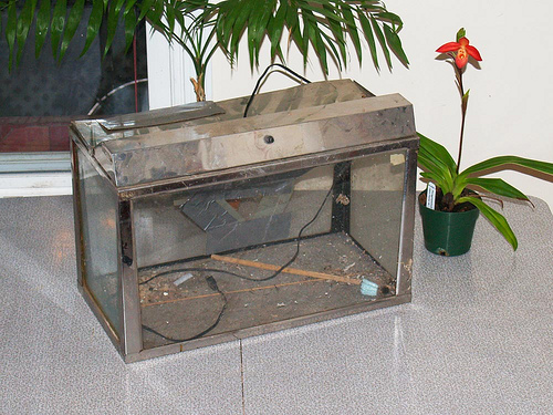How to repair an old aquarium - Green Diary - Green Revolution Guide by Dr Prem