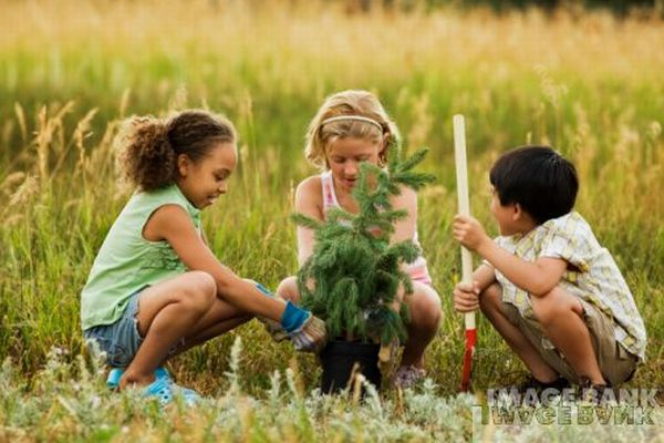 7 Things kids can do to help the environment - Green Diary ...