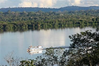 rainforest amazonia 65
