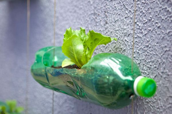 Seven Ways To Reuse Plastic Soda Bottles And Save Money