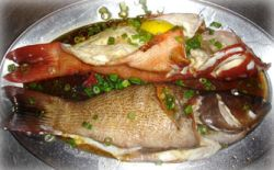 reef fish delicacies lure tourists 9