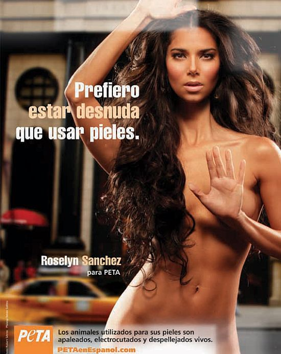 roselyn sanchez for peta
