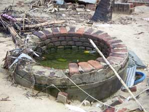 tsunami in sri lanka 2004 essay writer