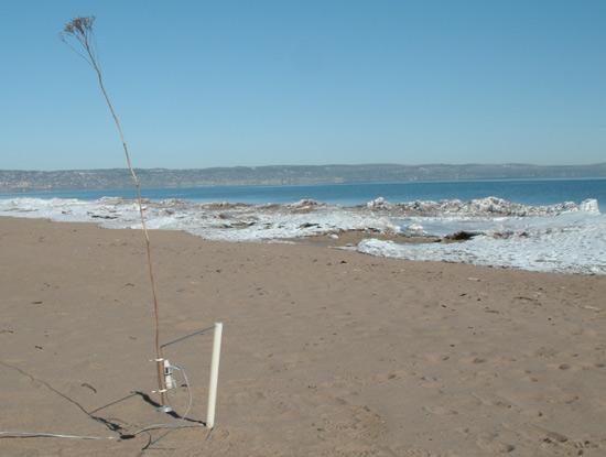 tele present wind interactive sculpture 2