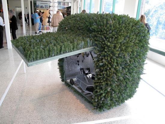 terrestrial shrub rover 1