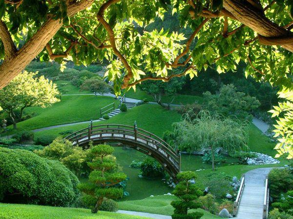 Tips for greener gardens