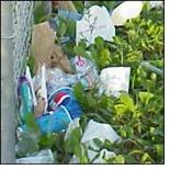 wrapper litters