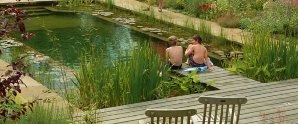 how to build a natural swimming pool pond