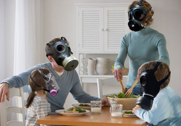 5 Green Ways To Reduce Indoor Air Pollution Green Diary