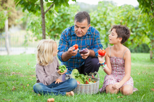easysteps_photo_ES10_organics_vegetables-504x334
