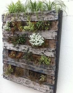 pallet-plants-vertical-garden-landscaping-network_4358