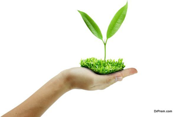 i am eco friendly essay What is being eco-friendly and 10 steps to become eco environmentally friendly essayswhenever we go for a walk through the streets i am eco friendly essay.