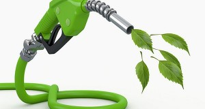 Biofuels Help Us Get Rid of Oil