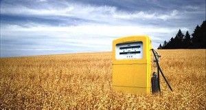Biofuels to Power a Greener Future