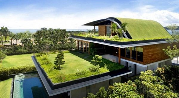 Installing Green Roofs