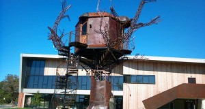 Dogfish Head Brewery _2