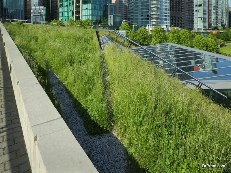 Green Roofs How Do They Work